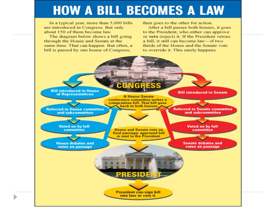 How A Bill Becomes A Law Schoolhouse Rock Schoolhouse Rock How