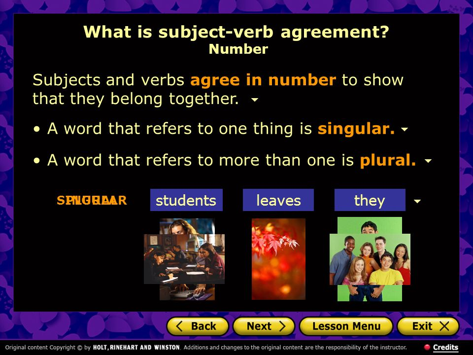 Using Subject Verb Agreement What Is Subject Verb Agreement Phrases
