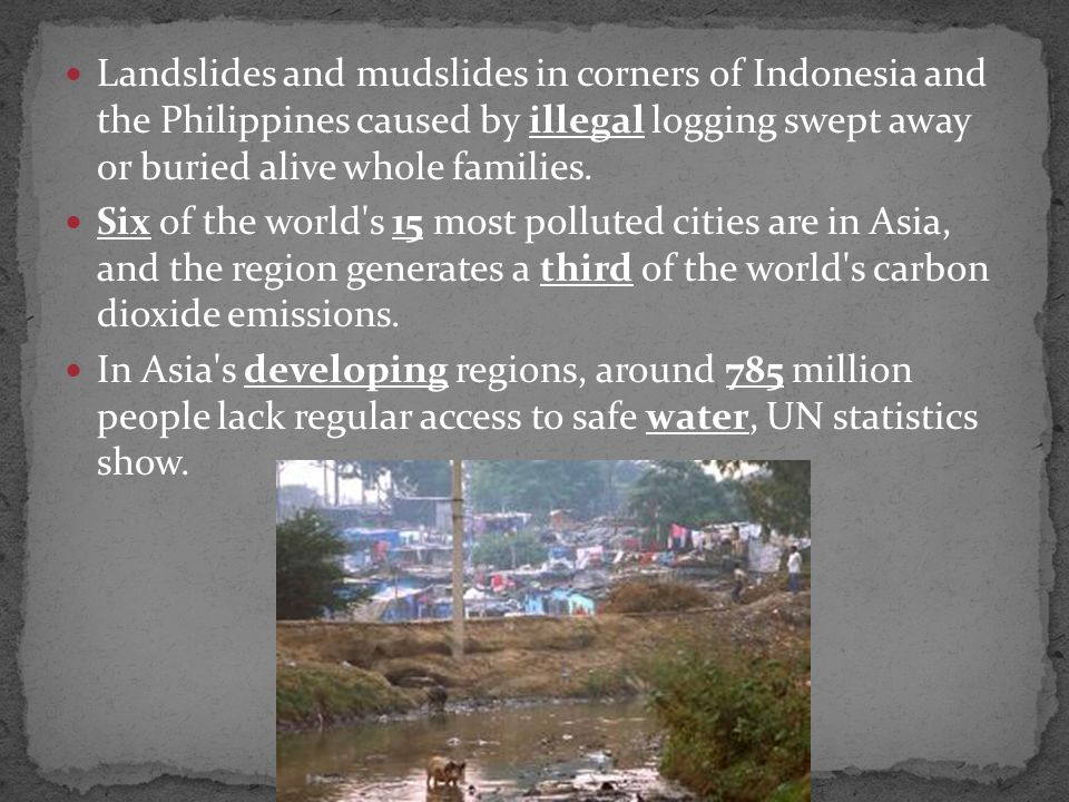 Landslides and mudslides in corners of Indonesia and the Philippines caused by illegal logging swept away or buried alive whole families.
