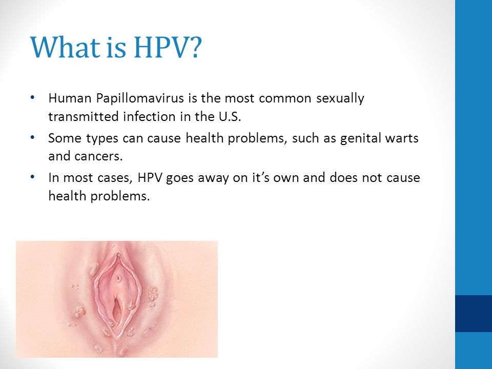 Hpv transmission oral sex 12