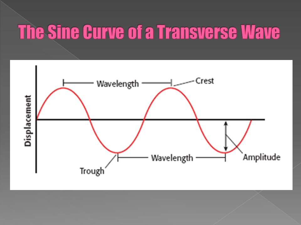 Identify The Crest Trough Amplitude And Wavelength Of A Wave