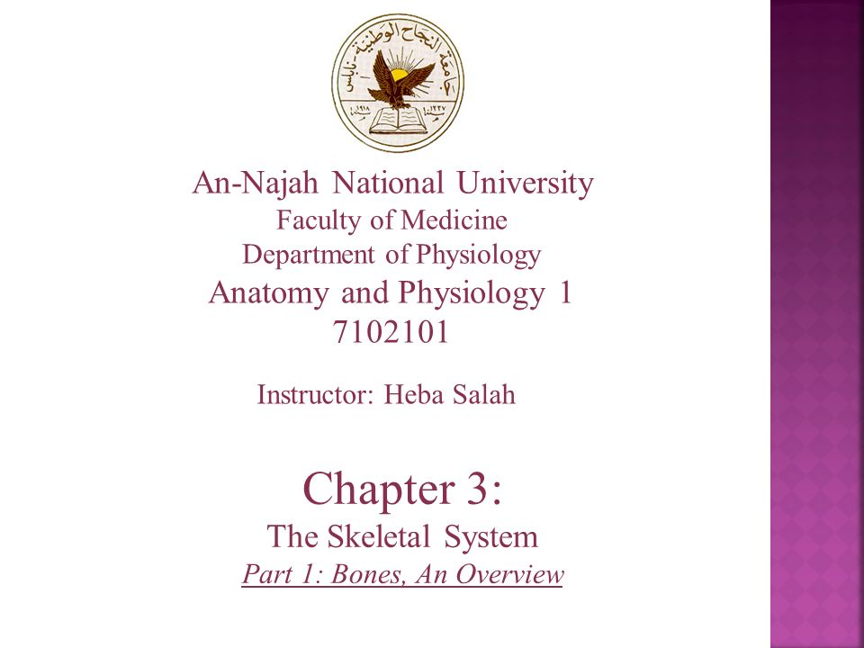 An-Najah National University Faculty of Medicine Department of ...