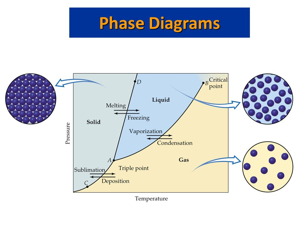What Is A Phase Diagram Phase Diagram Plot Of Pressure Vs