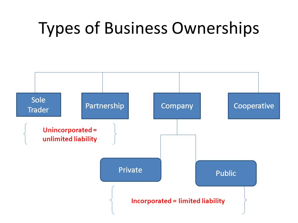 identify and describe types of business entities business essay In tesco we can identify different  purpose and ownership of two contrasting business essay  i will be describing the type of business,.