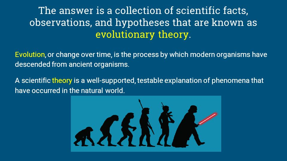 an argument against the modern theory of evolution The theory of evolution is one of the great intellectual revolutions of human history, drastically changing our perception of the world and of our place in it charles darwin put forth a coherent theory of evolution and amassed a great body of evidence in support of this theory in darwin's time.