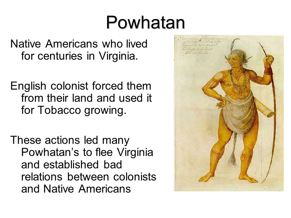 Early colonial national eras jamestown the first permanent powhatan native americans who lived for centuries in virginia publicscrutiny Images