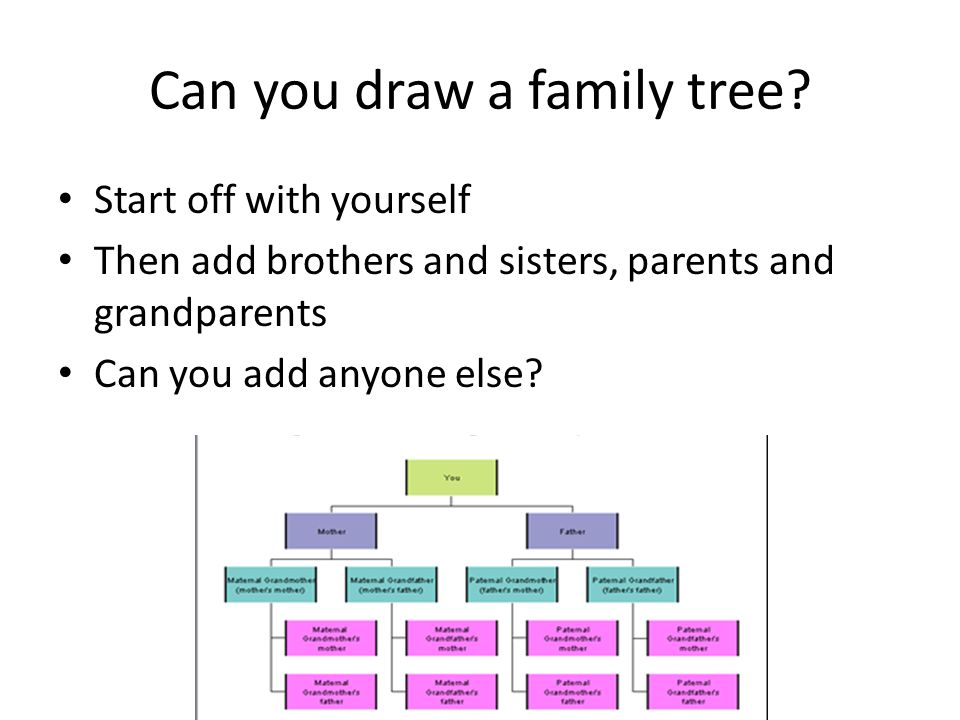 Family Trees  What is a family tree? Why are they important? How can