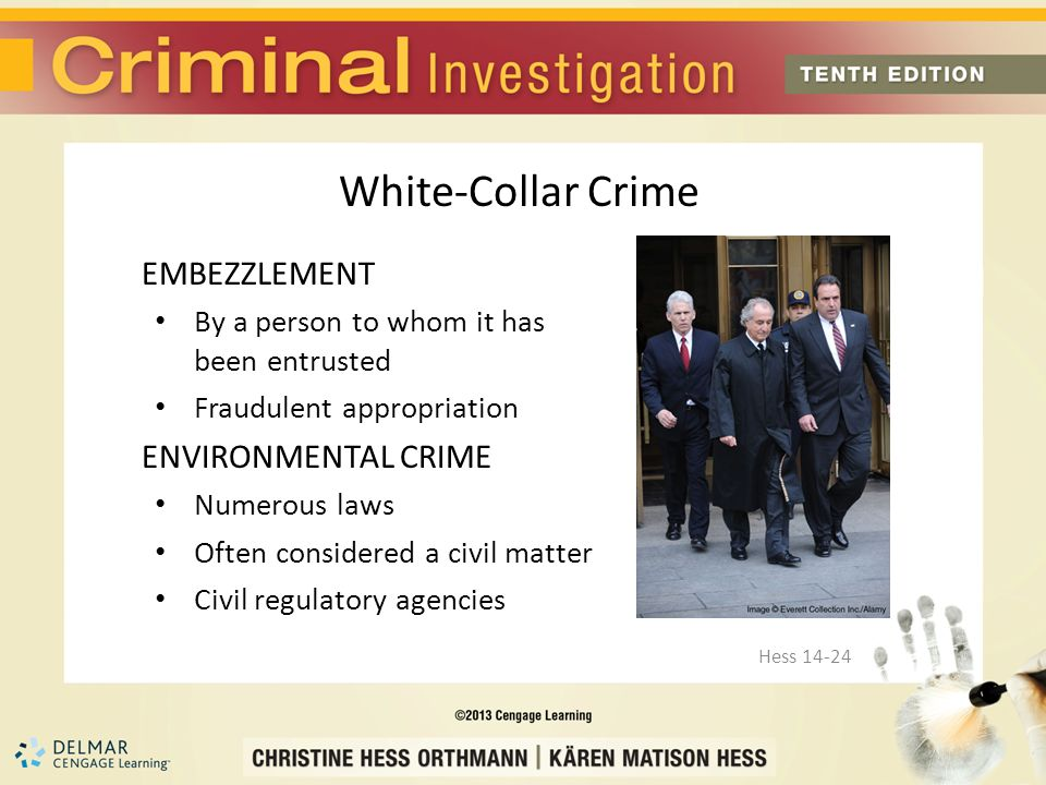 Chapter 14 Larceny/Theft, Fraud and White-Collar Crime Hess ppt download