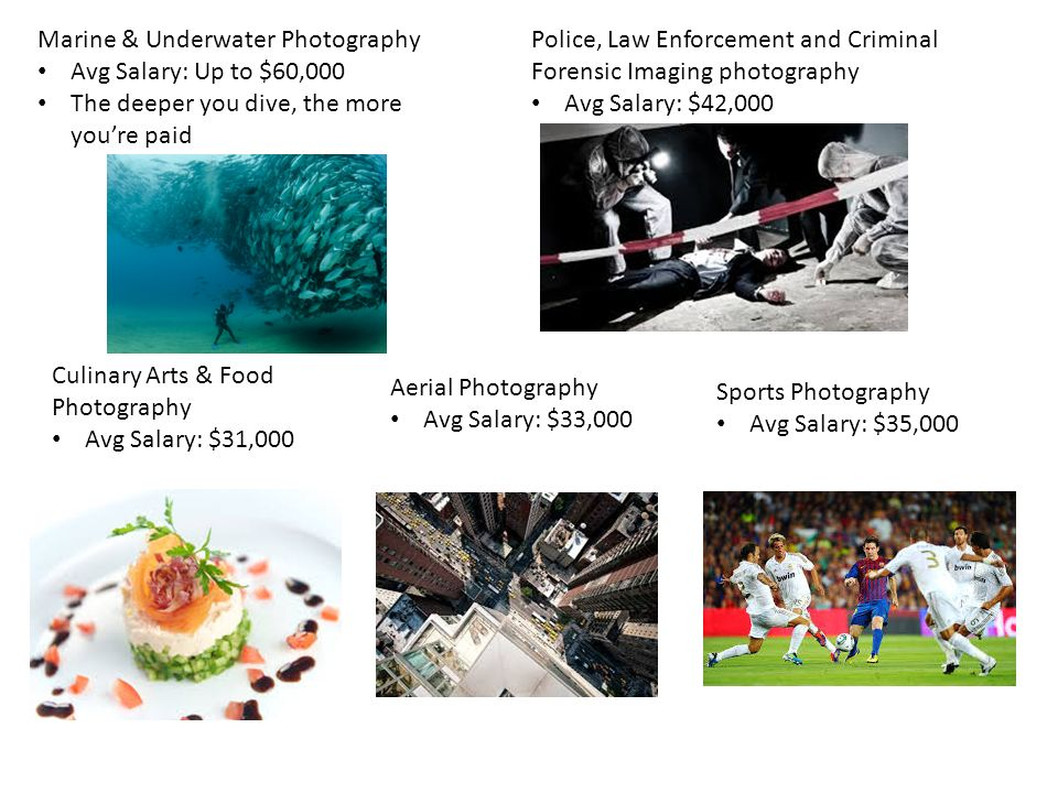 2 Marine Underwater Photography Avg Salary Up To 60000 The Deeper You Dive More Youre Paid Police Law Enforcement And Criminal Forensic Imaging