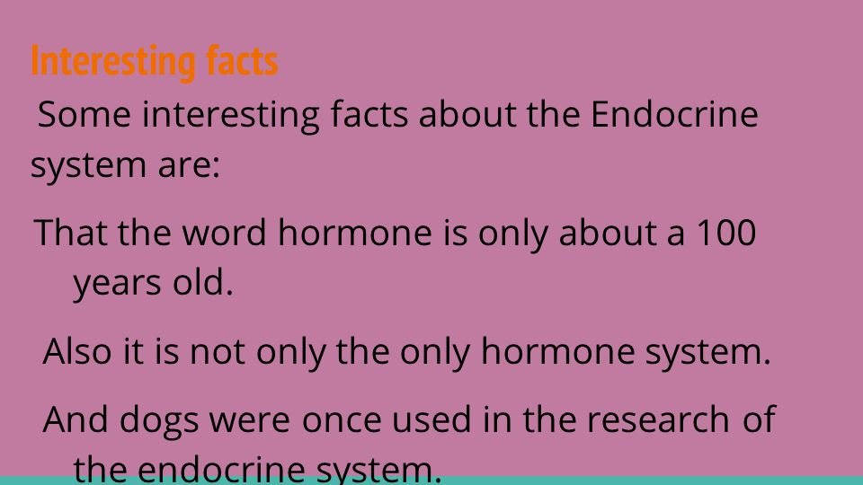 The Endocrine System By Serene And Maddie The Endocrine System The