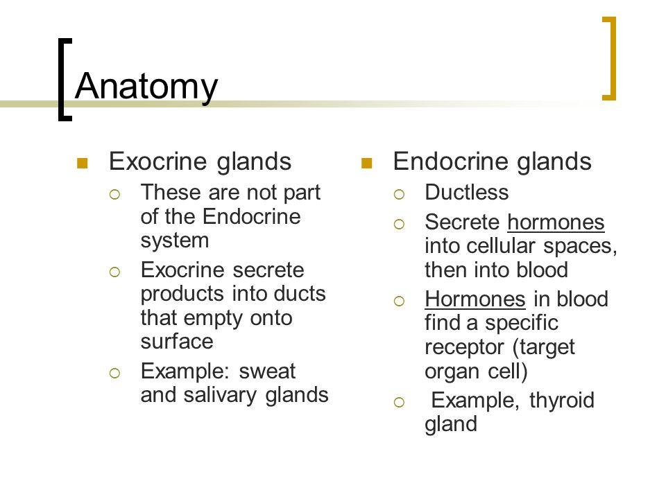 Unit 9: The Endocrine System Michael D. Haight, D.C. - ppt download