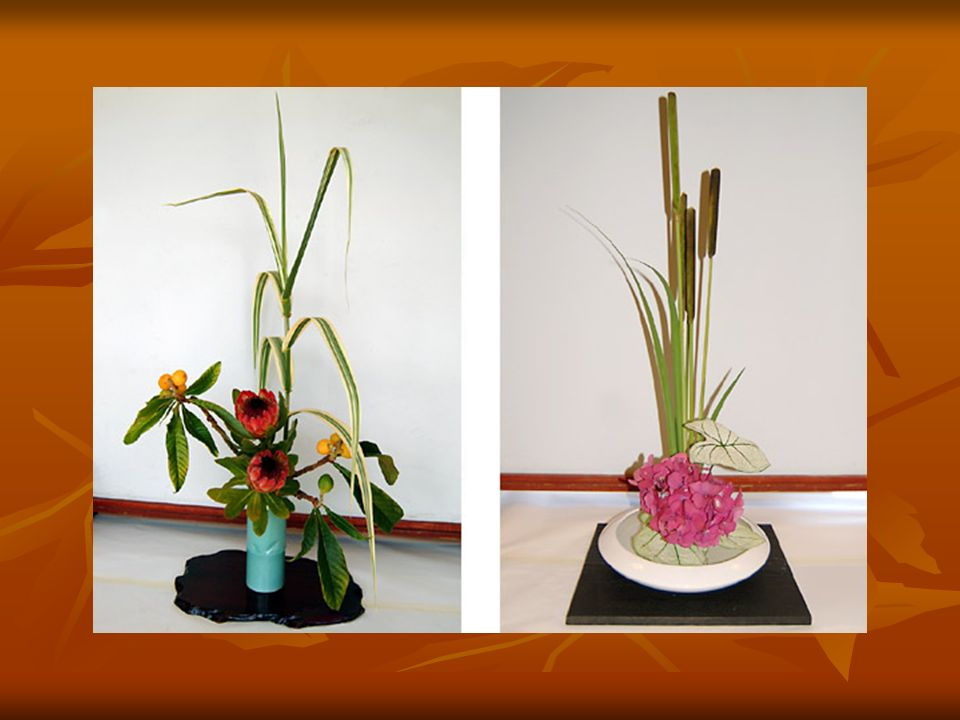 Flower Arrangement Types Selection Of Material And Essential Equipment Used In Flower Arrangement Application Of Principles And Elements Of Art In It Ppt Video Online Download,How To Keep A House Clean With A Big Family