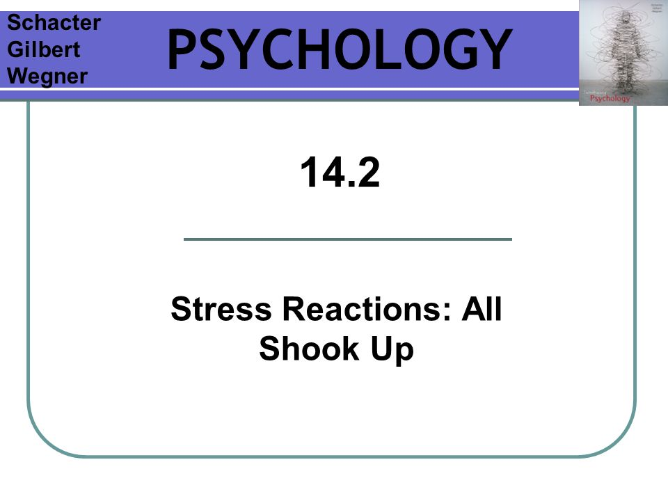 Chapter 14 Stress And Health Slides prepared by: Melissa S