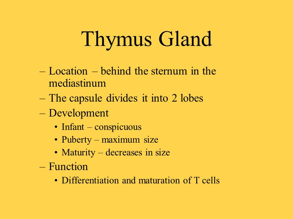 Lymphatic System. Components Lymph : clear, colorless fluid ( there ...
