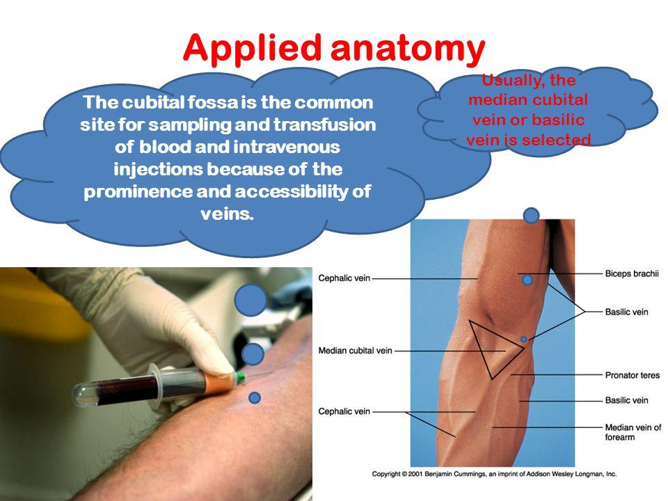 Upper Limb- Blood & nerve supply; effects of nerve injury G ...