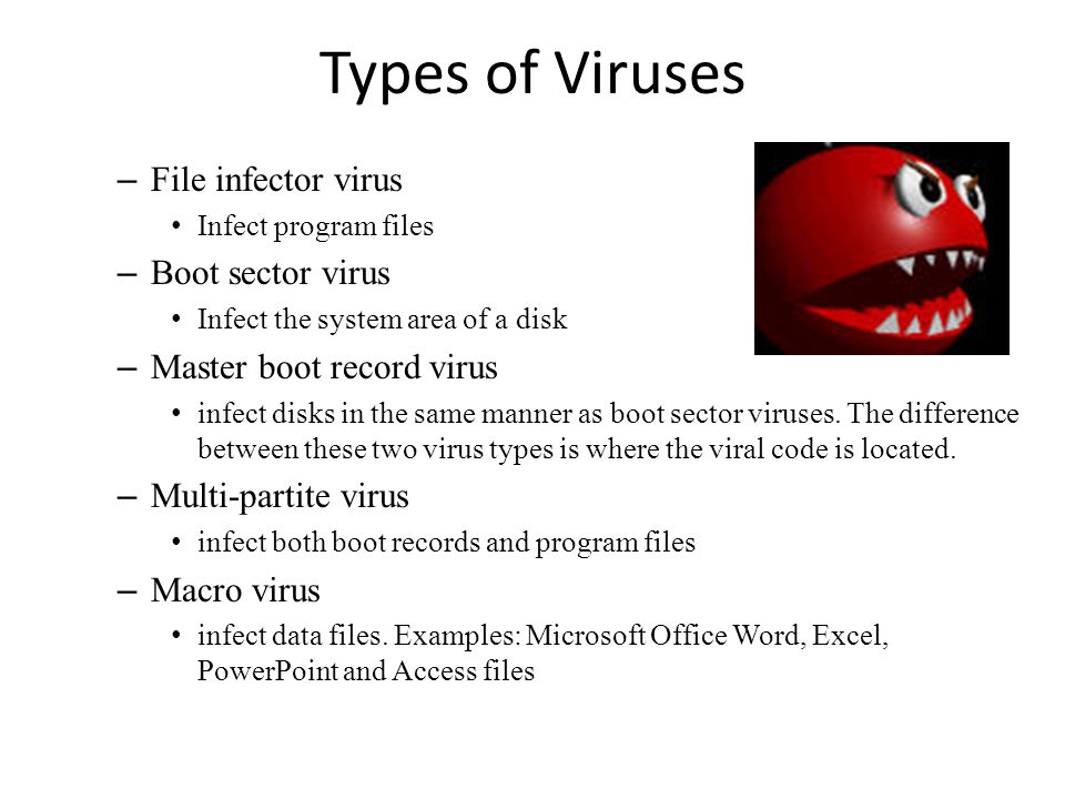 5 major types of computer viruses you should be known about in.