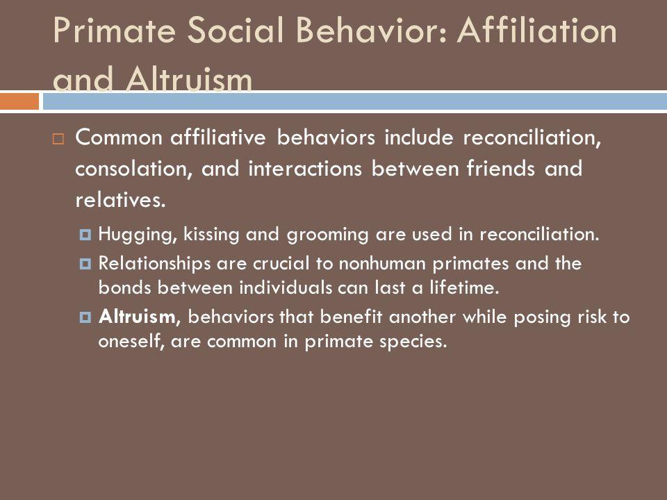 CHAPTER 7 Primate Behavior  Chapter Outline  The Evolution of
