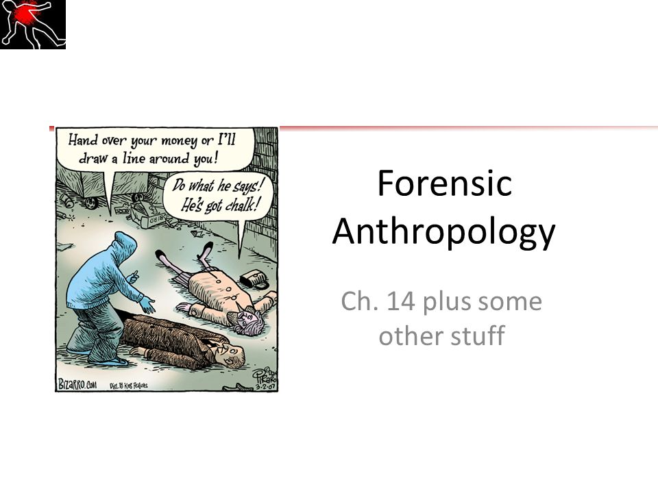 Forensic Anthropology Ch 14 Plus Some Other Stuff Ppt Download
