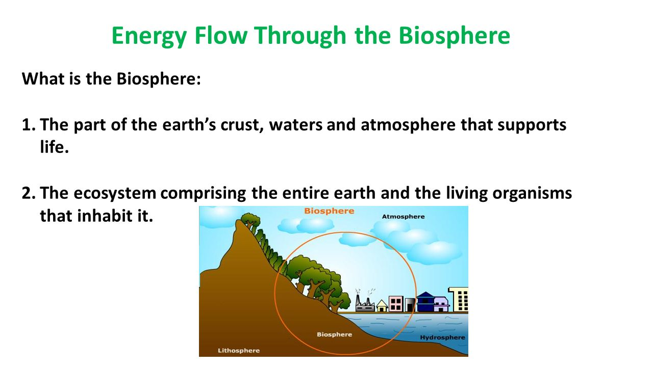 What is the biosphere 66