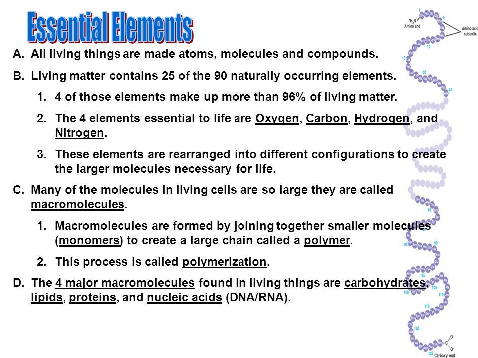 essential molecules for life