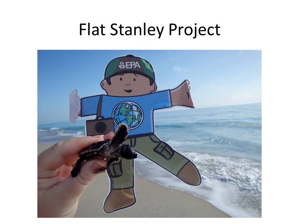Image result for flat stanley project