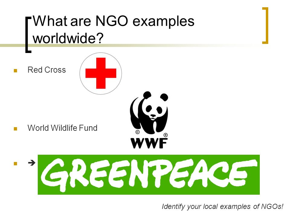 what is an example of a non governmental organization