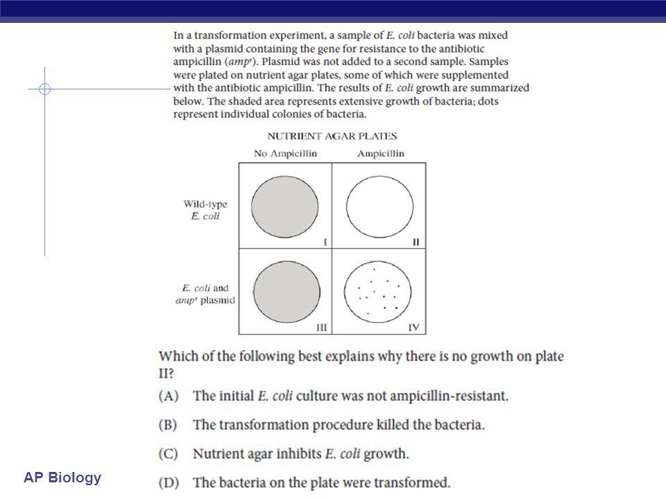 ap biology plasmid essay rubric