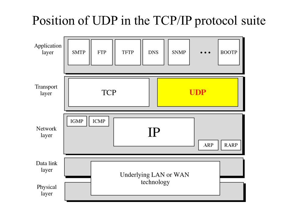 Position of UDP in the TCP/IP protocol suite