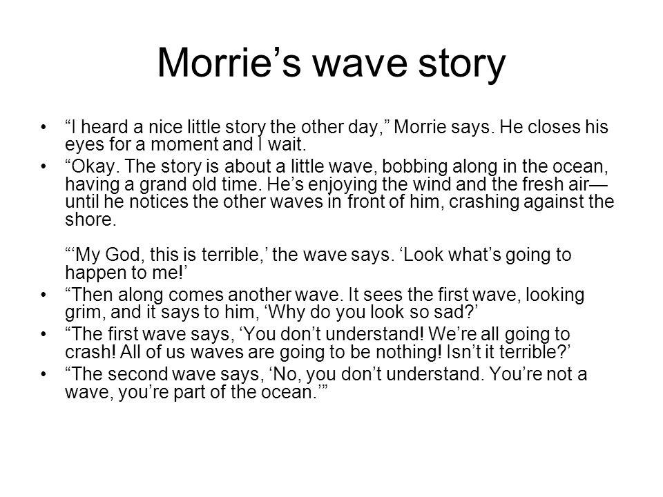 the wave plot summary