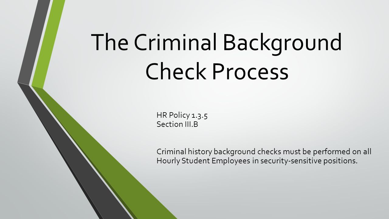criminal background checks and student employees