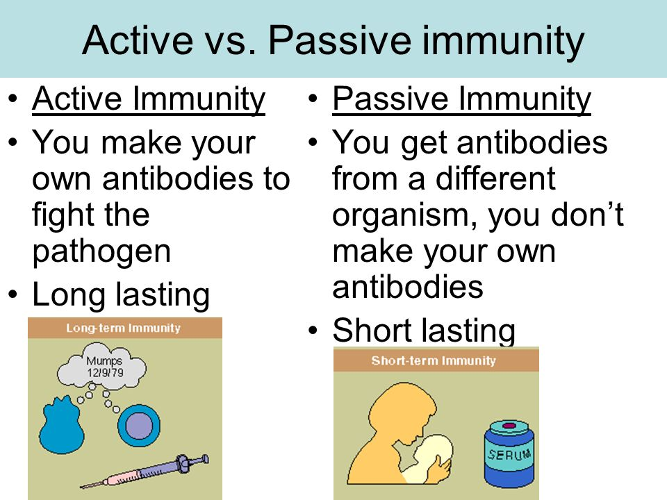 Aim How Does Your Body Become Immune Resistant To Disease Ppt