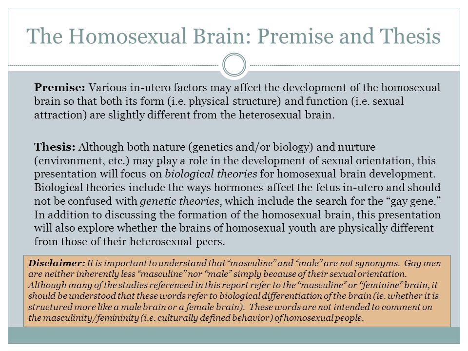 Hy antigen homosexuality