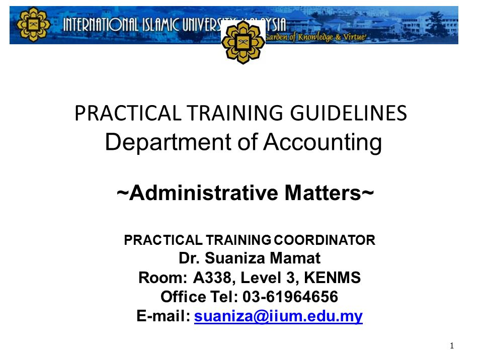 Practical Training Guidelines Department Of Accounting 1 Practical