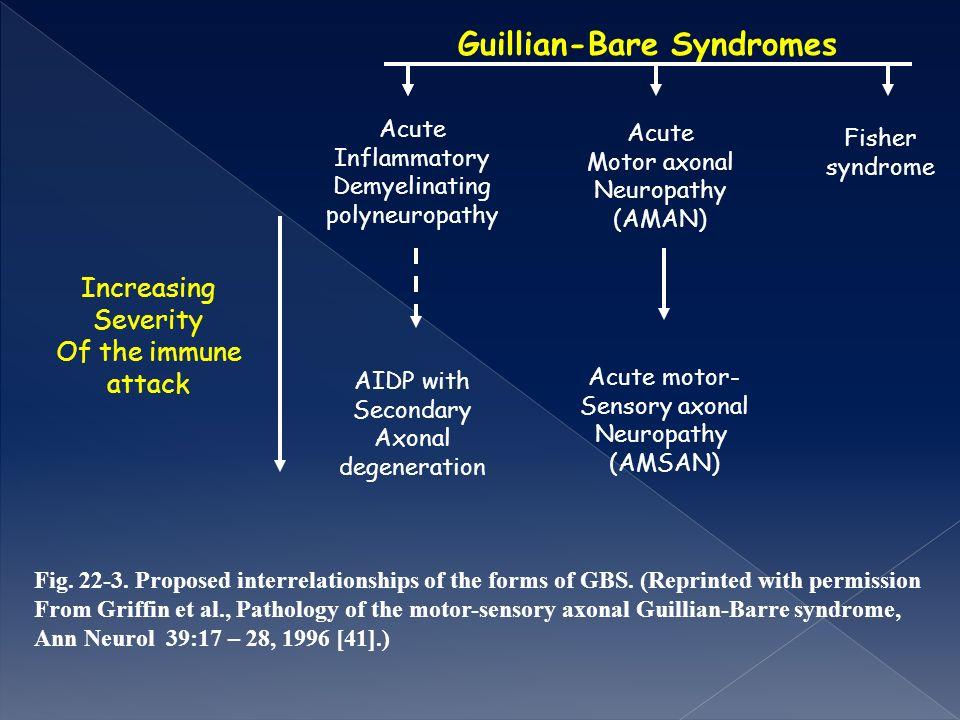 Guillian-Bare Syndromes Acute Inflammatory Demyelinating polyneuropathy Acute Motor axonal Neuropathy (AMAN) Fisher