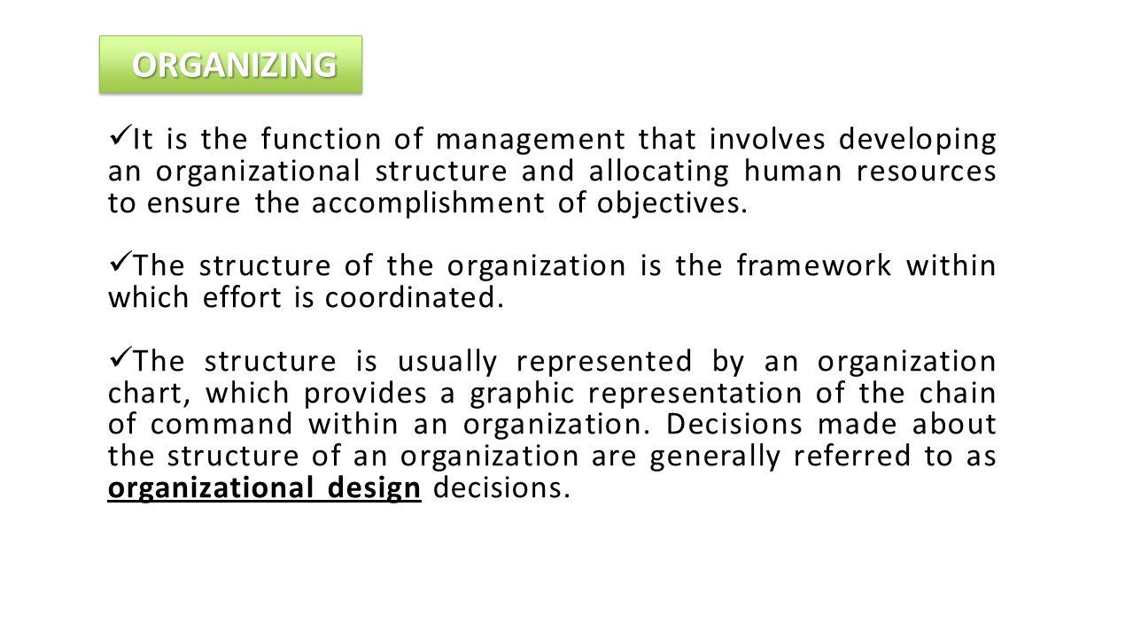 Fayol Organisation