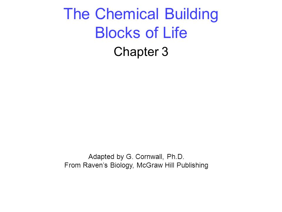 The Chemical Building Blocks of Life Chapter 3 Adapted by G