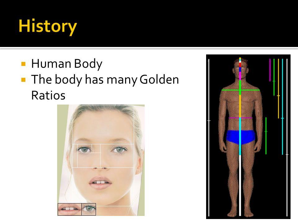 By Jamie Harvey   The golden ratio is …   The golden