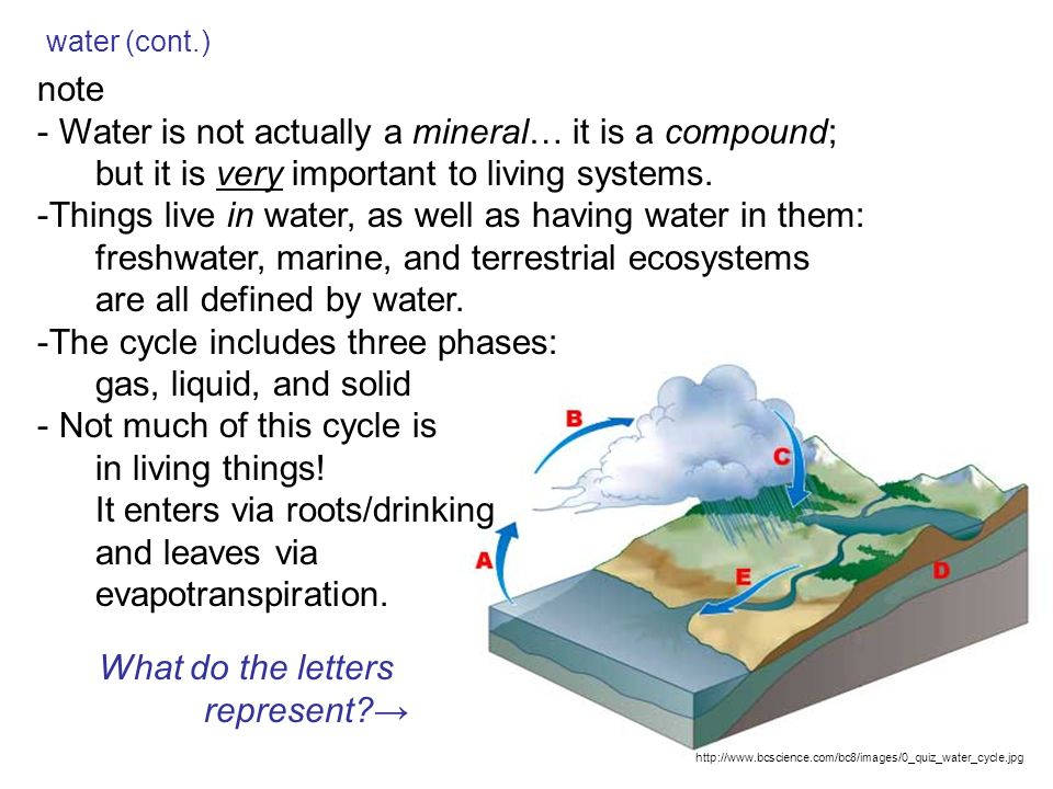 Biogeochemical cycles what is a biogeochemical cycle what 7 water cont ccuart Choice Image