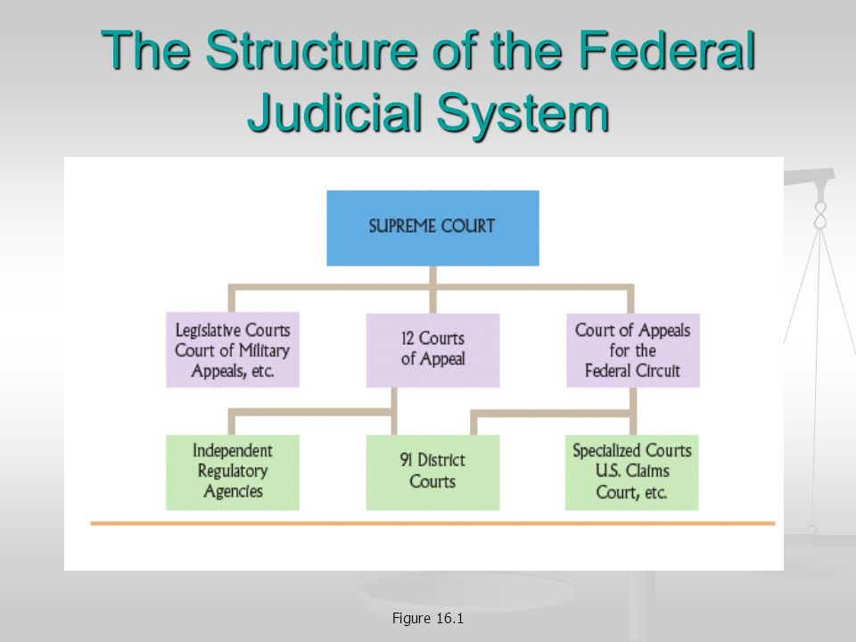 5 Figure 16 1 The Structure Of Federal Judicial System