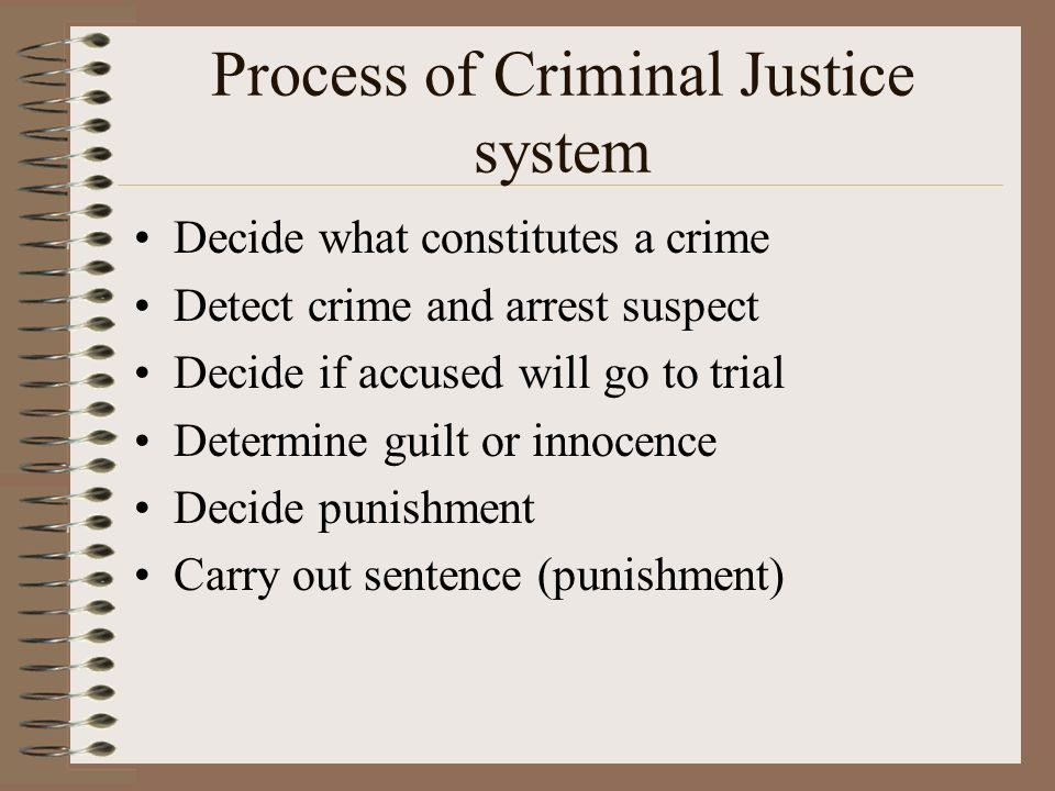 what are the main components of the criminal justice system how do they interrelate