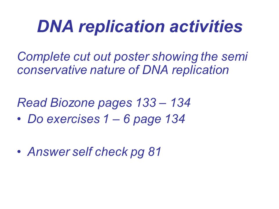 Dna Structure Dna Replication And Mitosis Dna Chromosomes And