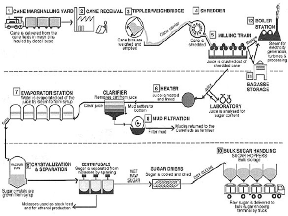 Industrail waste water for sugar cane industry.