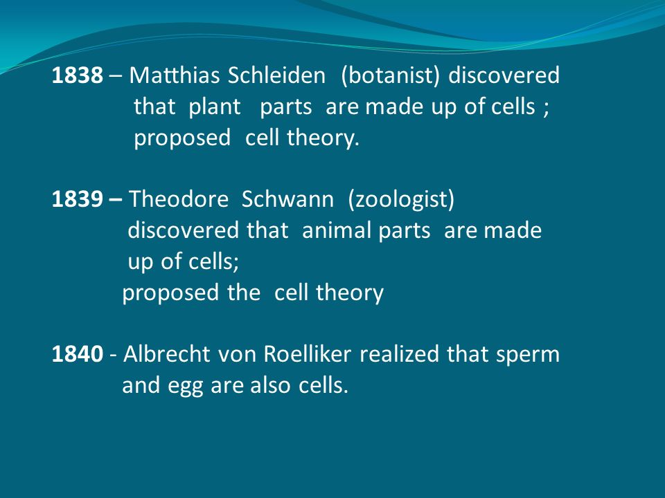 cell theory essay
