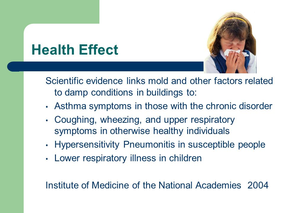 2 Health Effect Scientific Evidence Links Mold And Other Factors Related To Damp Conditions In Buildings Asthma Symptoms Those With The Chronic