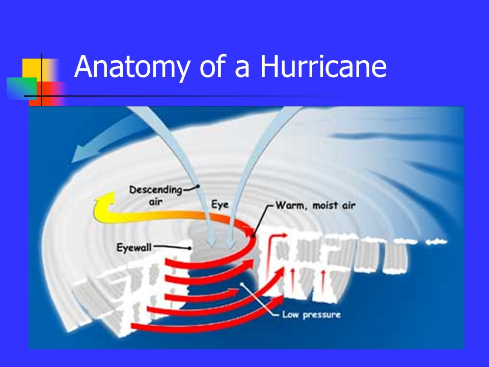 Hurricanes Source Ppt Download