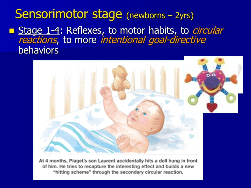 the sensorimotor stage of piagets theory of The discovery of egocentrism at the sensorimotor stage raises the question of how infantile egocentrism is related to the egocentrism displayed by preschoolers, a question with which piaget (1927–1928/1977) initially struggled.