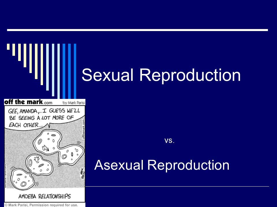 Asexuality and artificial insemination