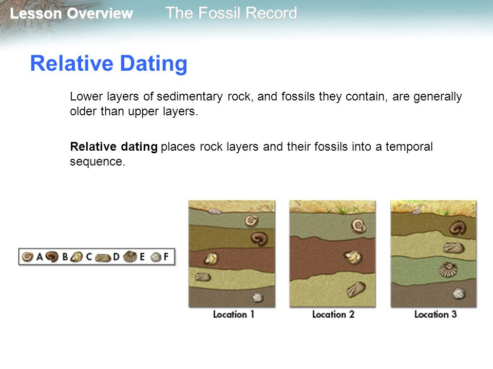 Fossil record relative dating