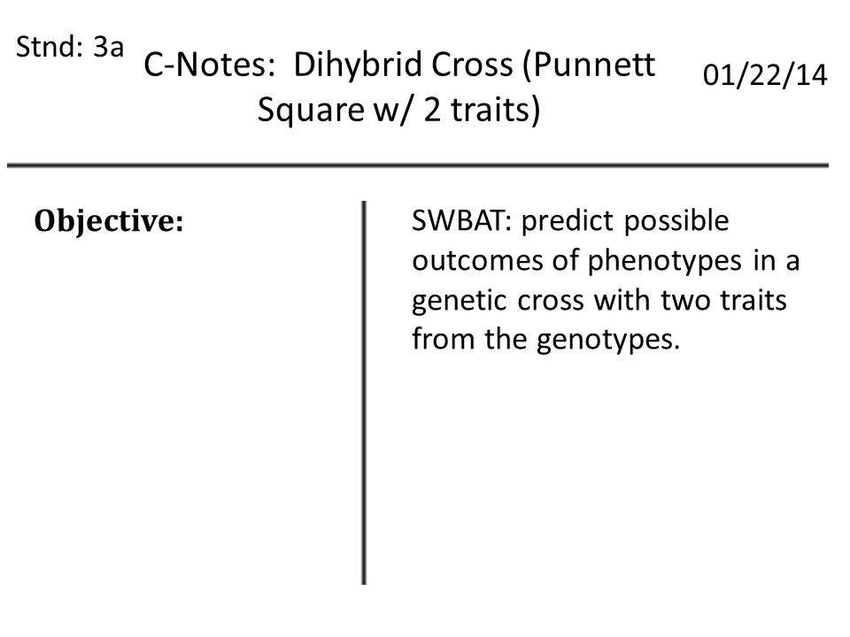 C Notes Dihybrid Cross Punnett Square W 2 Traits Stnd 3a 0122