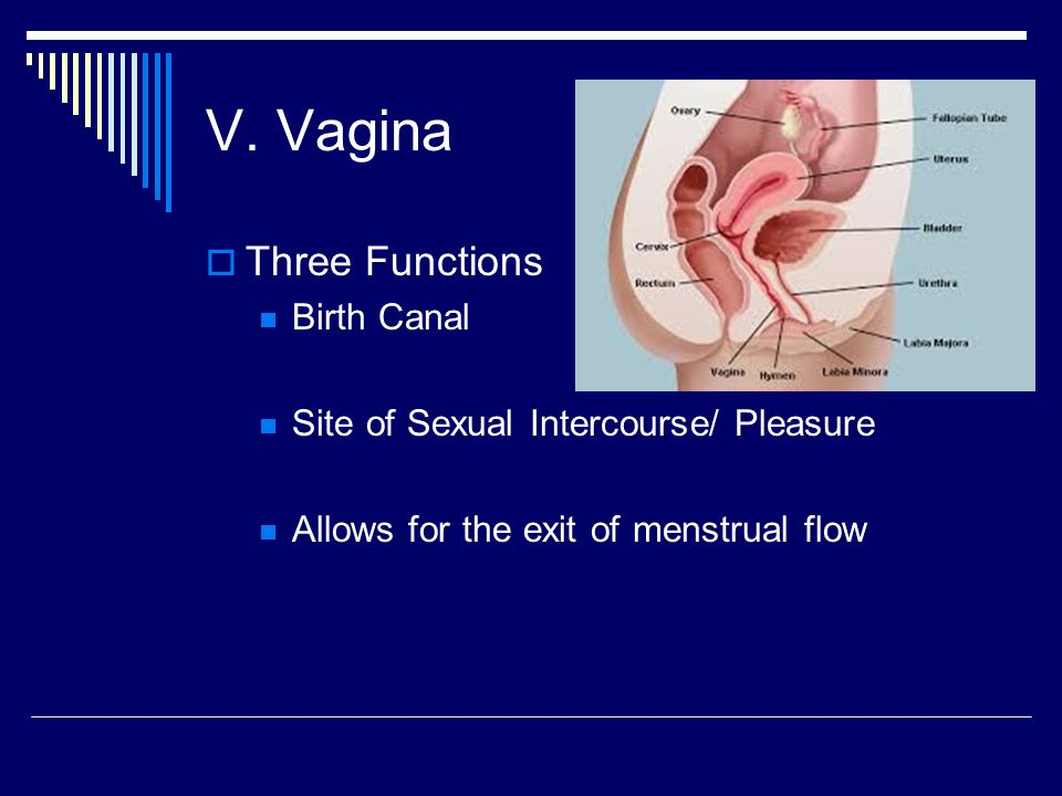 Vaginal cancer guide
